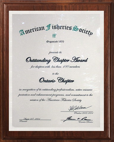 2004 AFS Outstanding Chapter Award